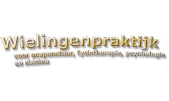 Bekkenfysiotherapie - Wielingen praktijk